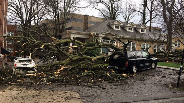 More severe weather expected in Alabama Georgia