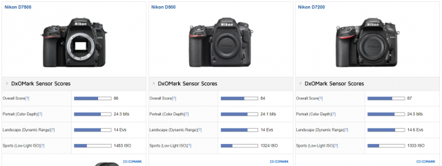 DxOMark scores for the D7200 D7500 and D500 reveal they are all very close in image quality