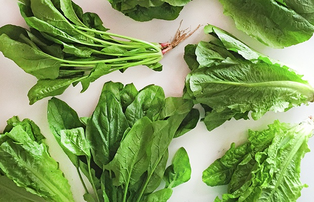 The 11 Best and Worst Foods for Your Gut Health