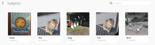 Synology Moments will recognize and tag common objects but you can see from these examples that it isn't perfect