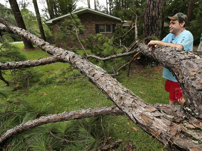 Chris Boland, whose home only missed a approach strike from a depressed hunger tree, looks over a issue of Tropical Storm Hermine as he waits for energy to be restored, in Valdosta in Valdosta. Georgia. Picture: AP